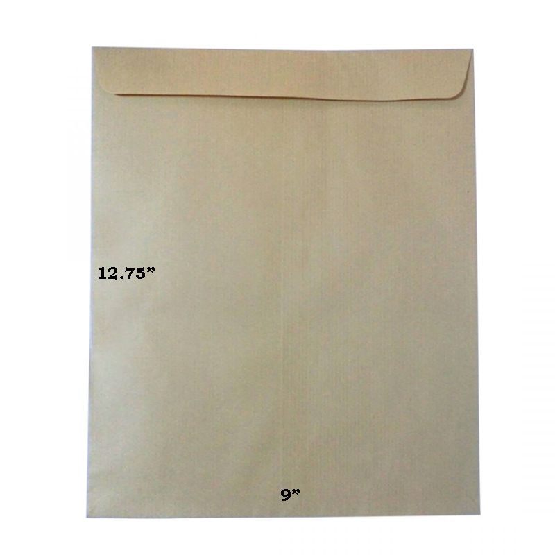 "Brown Envelope 9"" x 12.75"""