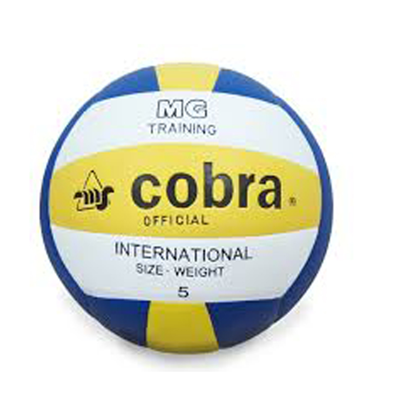 Cobra No.4 Volley Ball