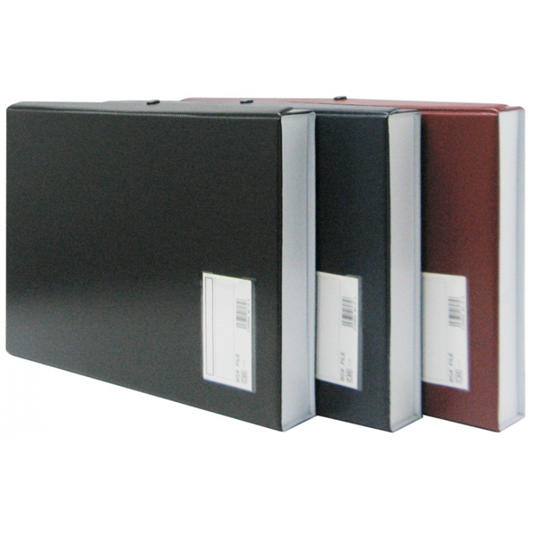 CBE 1175 PVC Box File